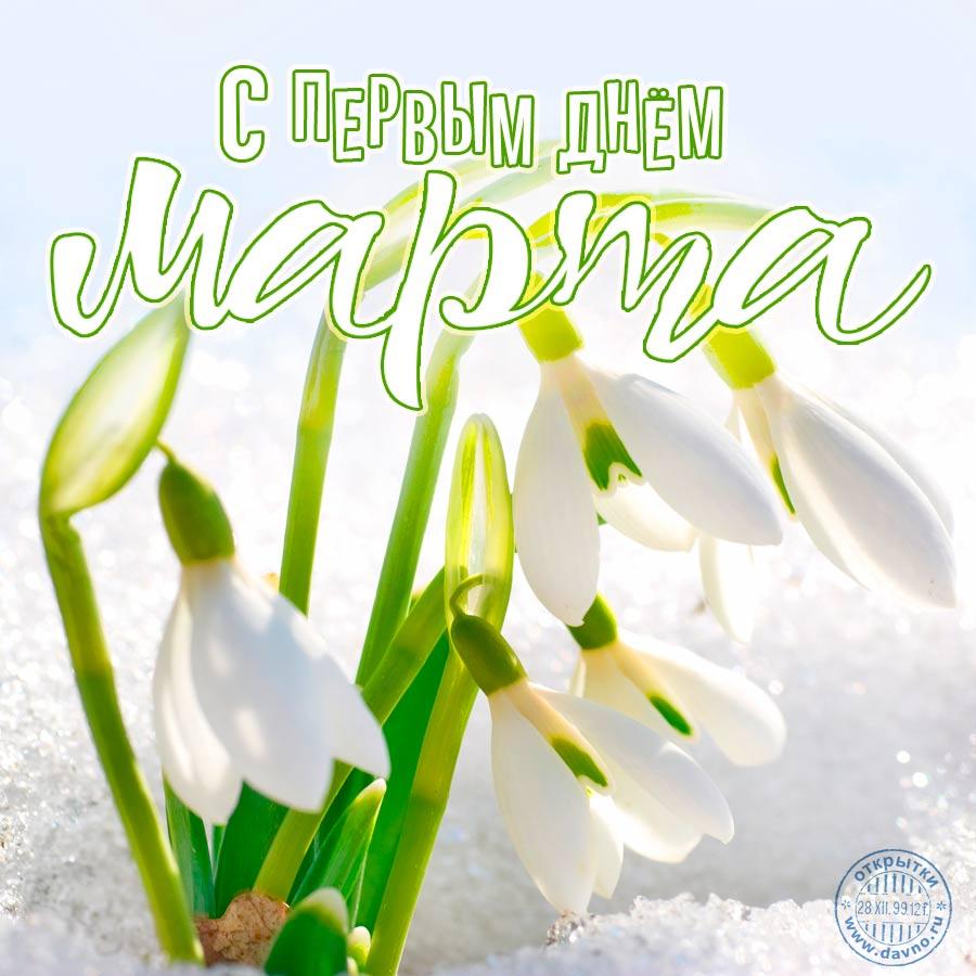 Днем рождения, открытки 1 марта день весны