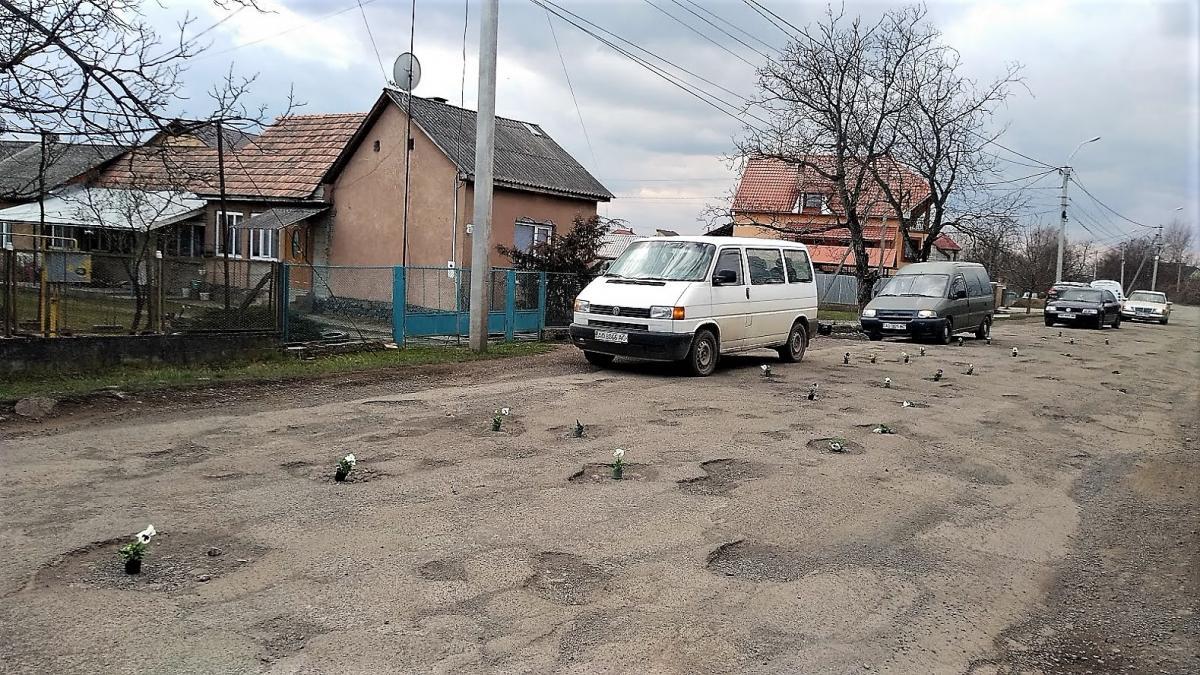 """К приезду Петра Порошенко на Закарпатье в ямах на дорогах """"выросли"""" цветы"""