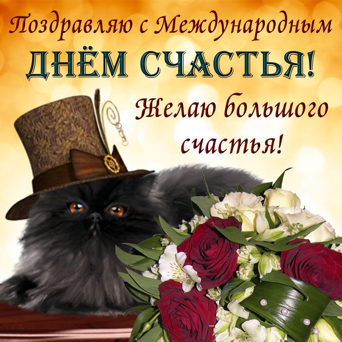 Коты, сегодня день открытки