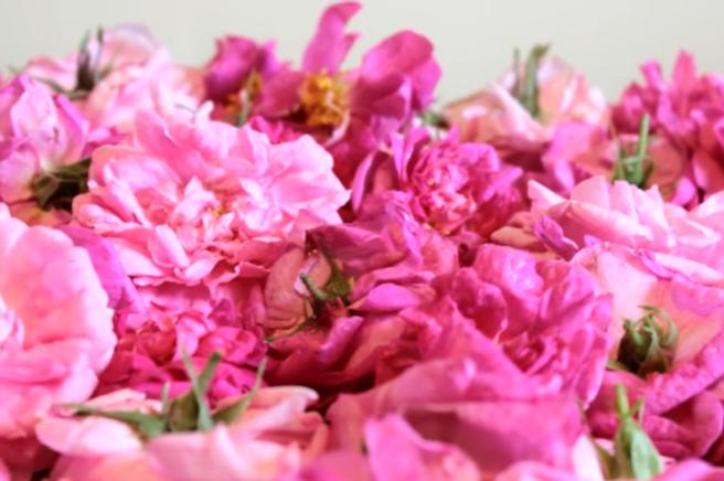 Этапы приготовления варенья из лепестков розы