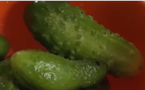 Огурцы малосольные быстро готовятся в пакете