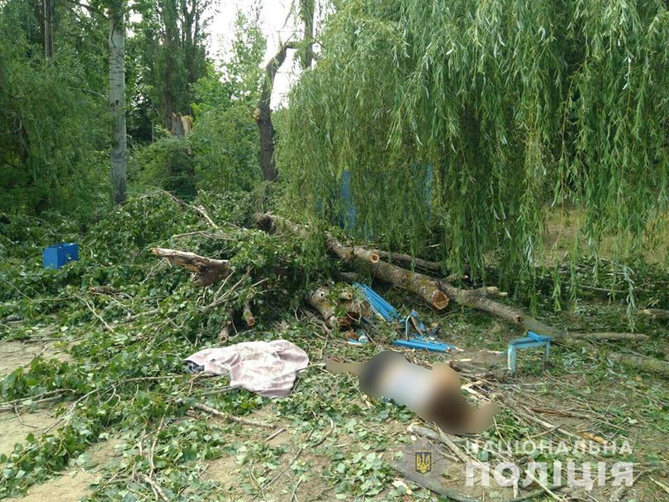 Новости Харьковщины — На Харьковщине возросло число жертв падения дерева на базе отдыха