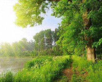 погода_лето_жара_небо_природа