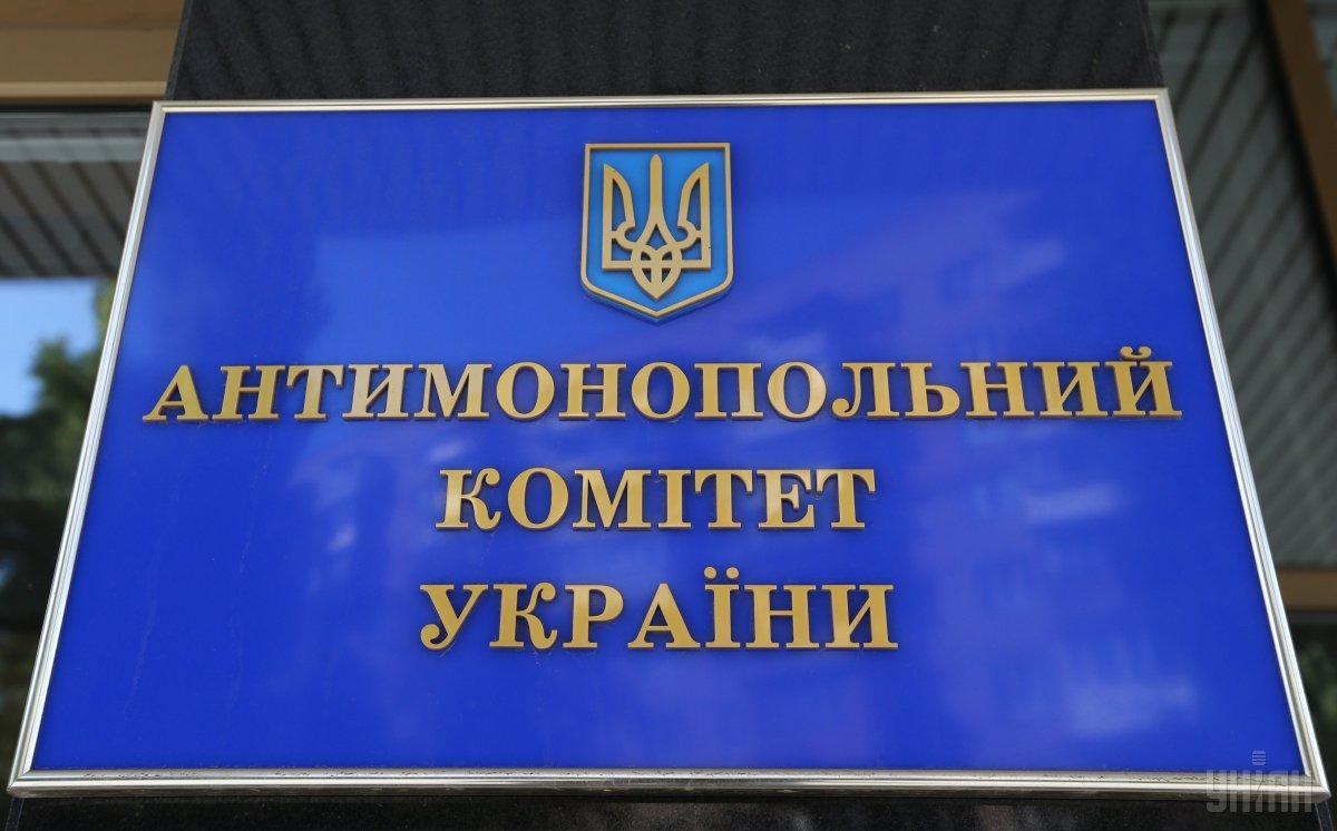 В АМКУ собрались назначить дочь преподавателя Зеленского