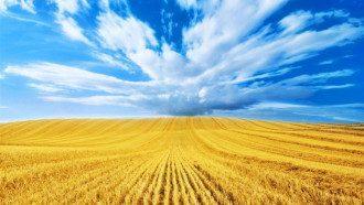 День Независимости Украины 2021