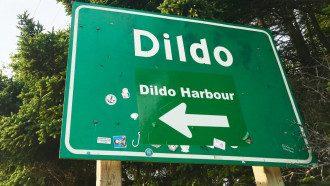 Город дилдо