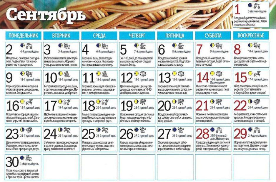 Лунный календарь садовода и огородника на сентябрь 2019