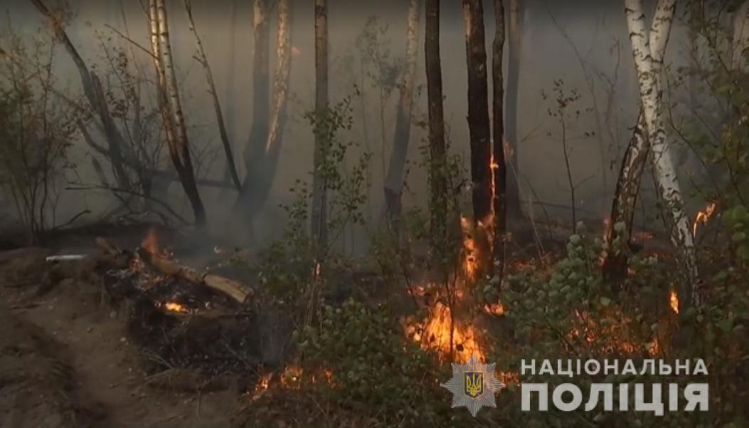 Пожар в Чернобыльской зоне - последствие женской мести, узнали копы - Пожар в Чернобыле 2019