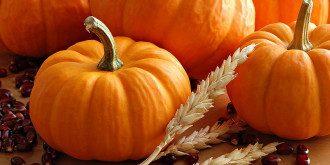 Осенний рацион стоит дополнить тыквой/ Фото из открытых источников