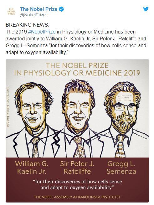 Стало известно, кому и за что дали Нобелевскую премию-2019 по медицине