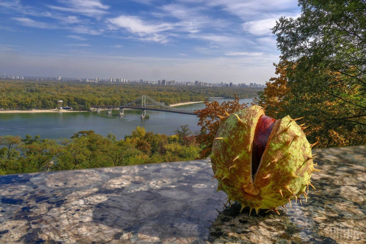осень, погода, каштан, Киев