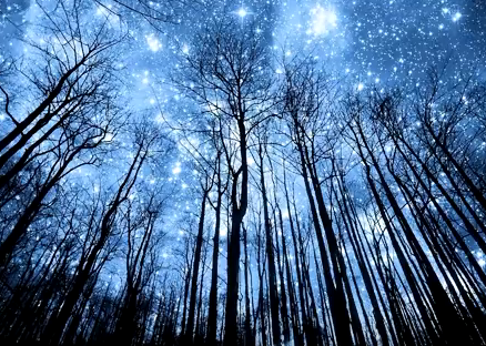 Ракам необходимо форматнуть сознание, посоветовал гороскоп на 16 октября 2019 - Гороскоп на 2019