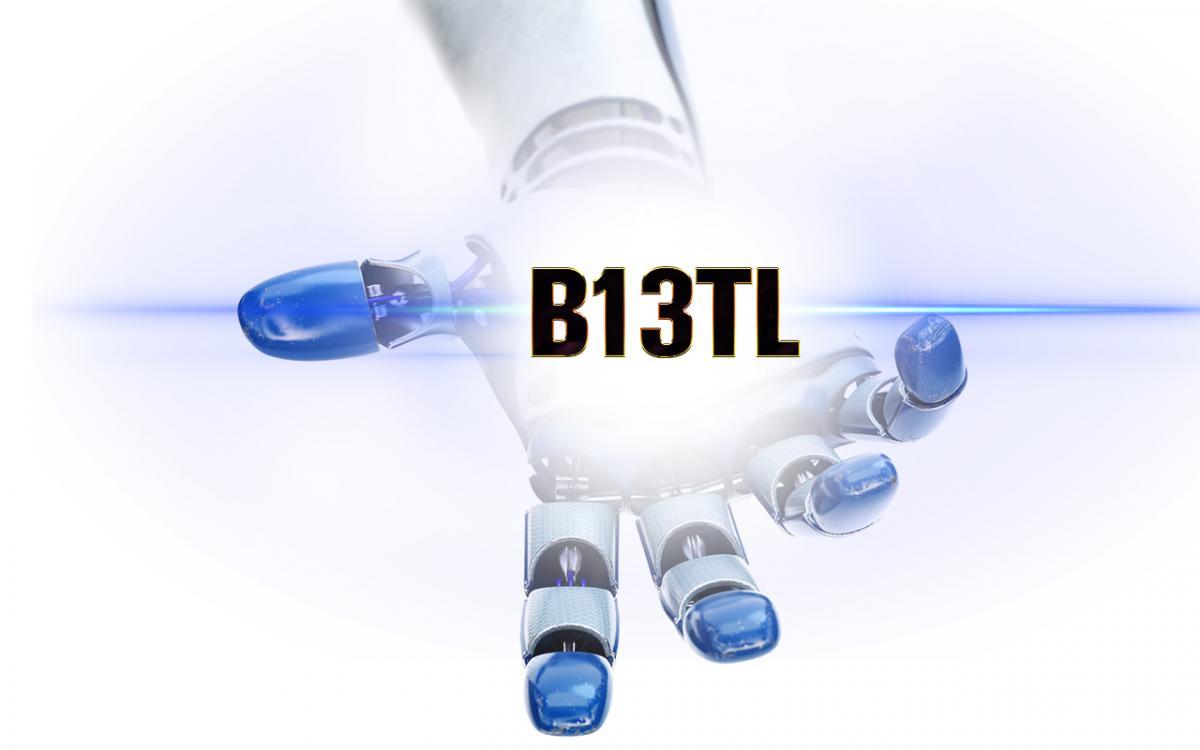 Торговый робот B13TL не рискует понапрасну.