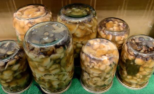 Польский гриб можно быстро замариновать