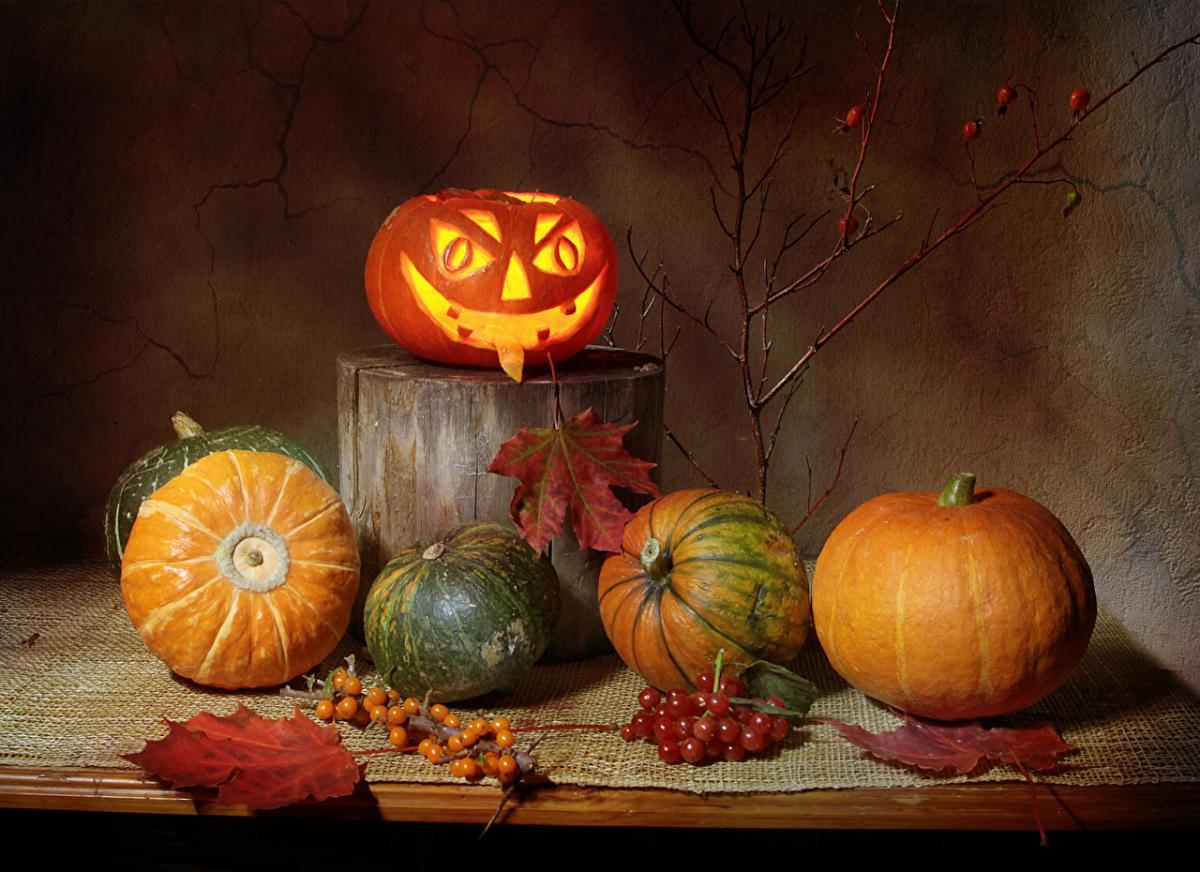 31 октября – праздник Хэллоуин 2019 и Луков день: что нельзя делать, приметы