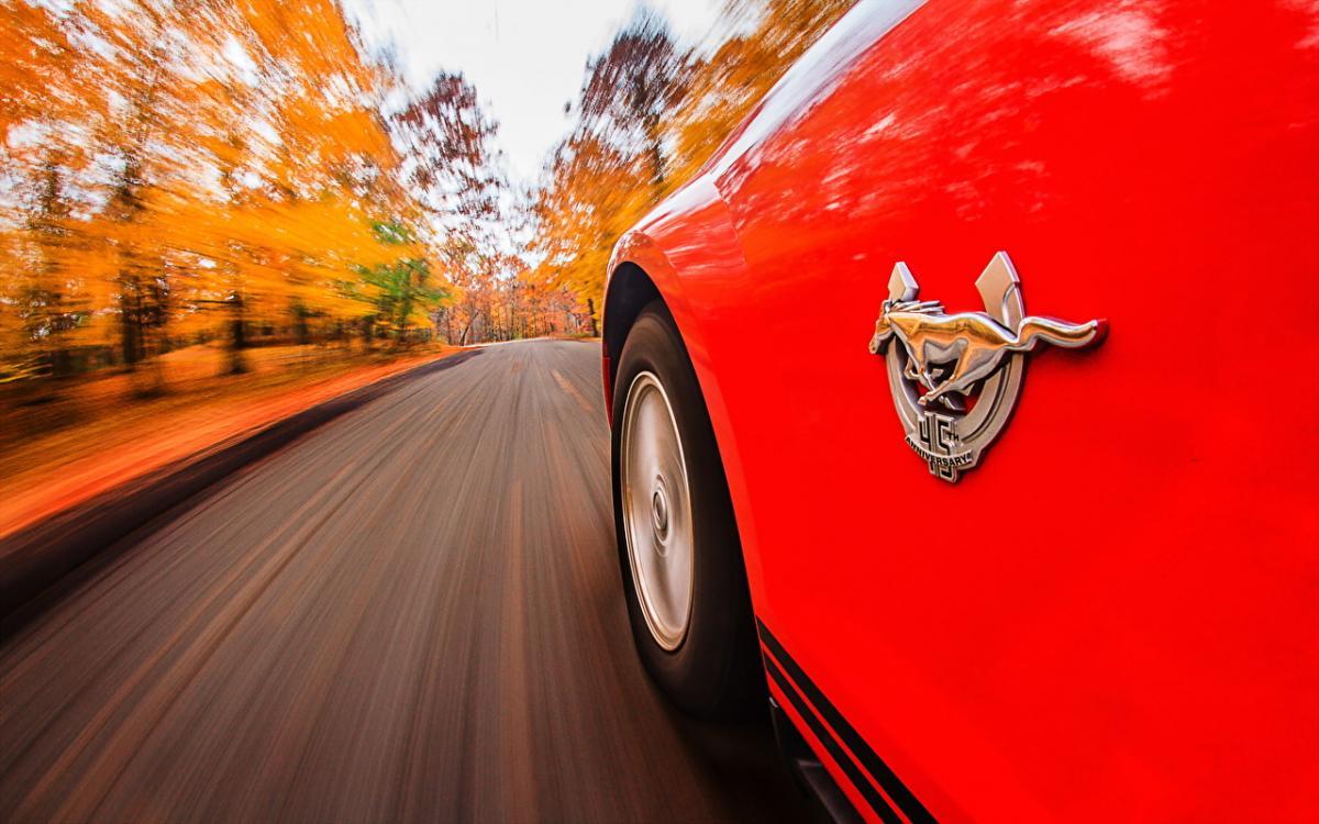 27 октября 2019 – праздник автомобилиста, тещи и Параскевы: что нельзя делать в этот день, приметы
