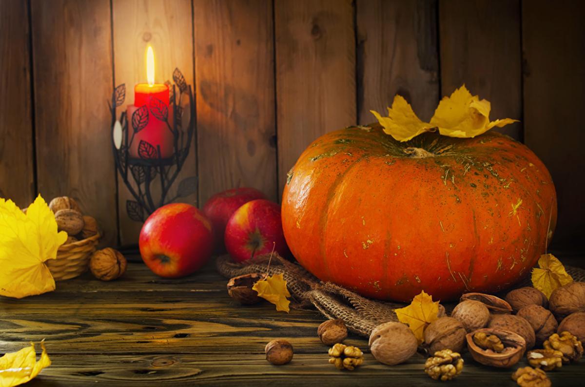 15 ноября – праздник детей и день Акиндина и Пигасия: что нельзя делать, приметы