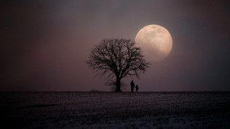Лунный календарь дел на 14 октября 2019: что нельзя делать в полнолуние