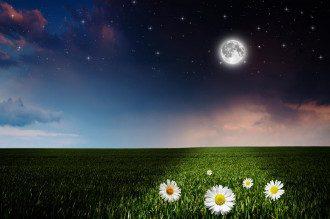 Лунный календарь на 16 октября: что делать нельзя, чтоб не лишиться денег и здоровья
