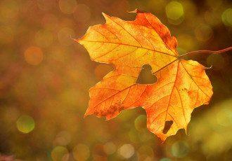 18 октября – какой сегодня праздник: что нужно делать для счастья и любви
