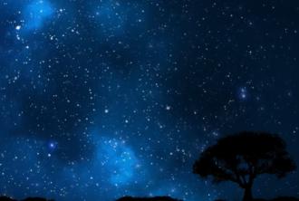 Двум знакам Зодиака стоит взять быка за рога, посоветовал гороскоп на сегодня - Гороскоп на 2019