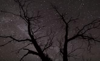 Три знака Зодиака гороскоп 2019 предупредил о моральных ударах - Гороскоп на 2019