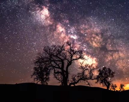 Астролог повідомила, що два знаки Зодіаку стануть бідолахами тижня – Гороскоп на квітень 2020 року