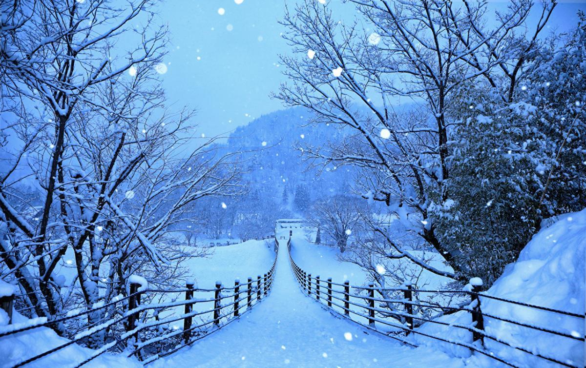 16 декабря – праздник удачи: что нельзя делать на Ивана Молчальника, приметы