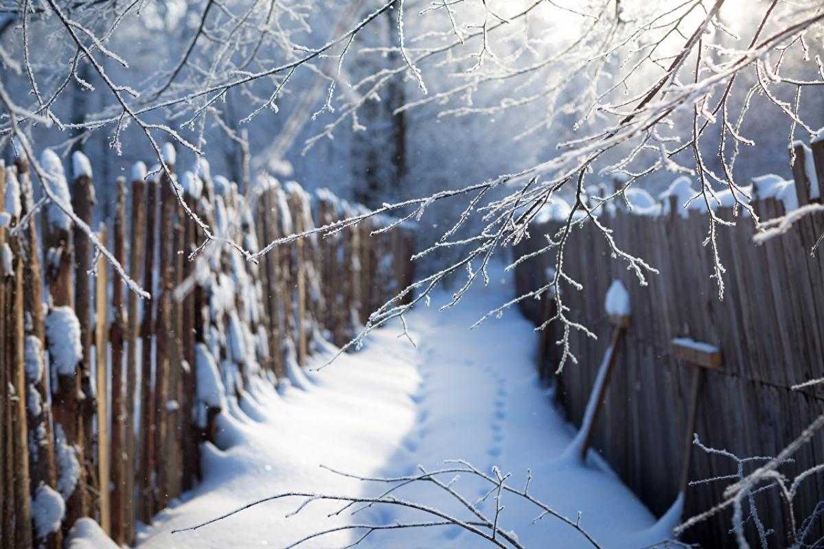 природа_зима_снег_дорога