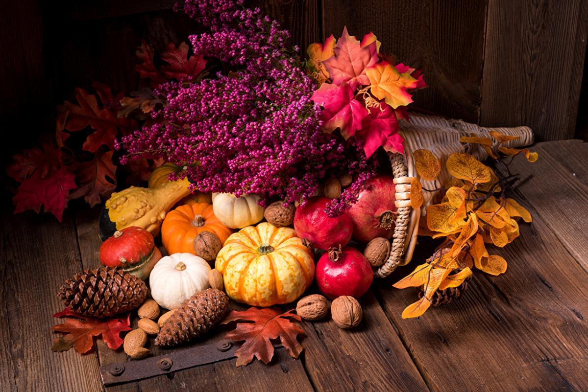 28 ноября праздник – начало Рождественского поста 2019 и с Днем благодарения: что нельзя делать, приметы