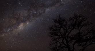 Астролог попередив, що з 18 по 22 лютого буде жахливий період – Гороскоп на лютий 2020