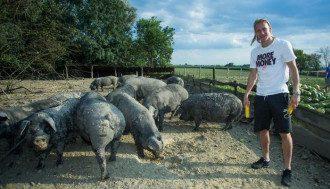 Вида открыл ферму по разведению черных свиней