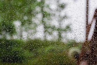 Синоптик дала бебебешный прогноз погоди на кінець квітня 2020