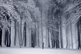 9 декабря – праздник Юрьев день: что нельзя делать, приметы