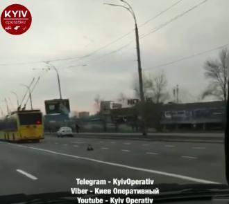 Около 10 троллейбусов остановились посреди дороги / скриншот