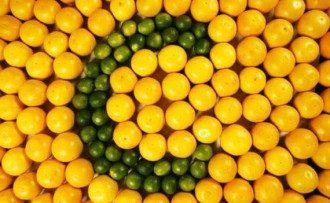 Дієтолог поділилася, що мінімальна добова норма вітаміну С – 70 мг – Вітамін С у продуктах