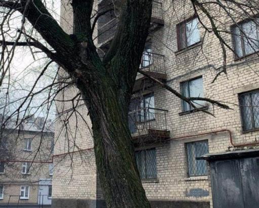 На востоке Украины трагически погиб 15-летний студент и 21-летняя студентка - Новости Донбасса