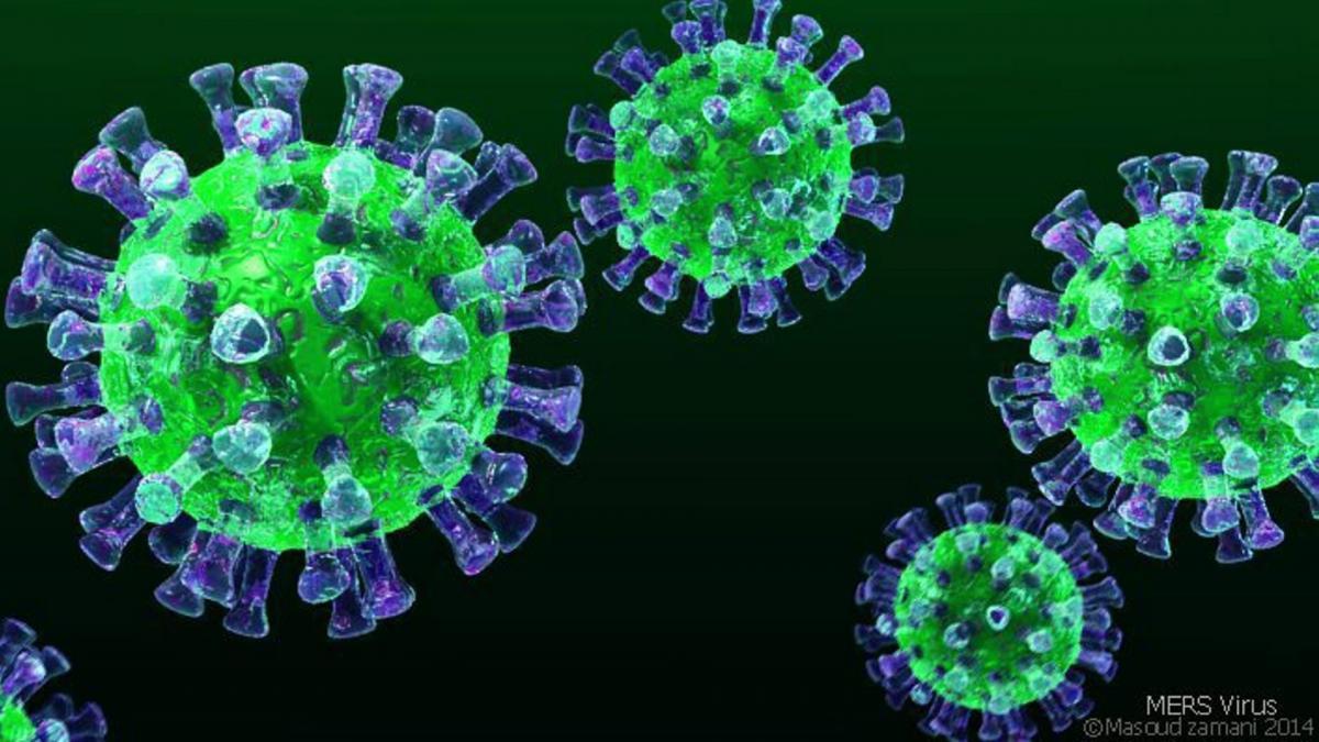 Коронавирус, белки