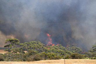 Пожар, Австралия