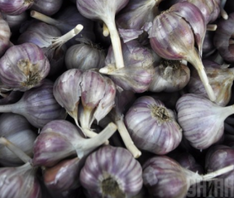 Норма чеснока в день – до 15 граммов, сообщила диетолог