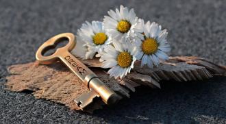 ключ, цветок, мечты