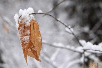 Синоптик предупредила, что в Киеве 30 января будет мокрый снег - Снег Киев прогноз