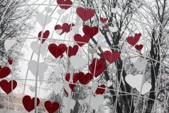 Сегодня - 1 февраля - Козерогов могут искусать любовные блохи - Гороскоп на 1 февраля 2020 года