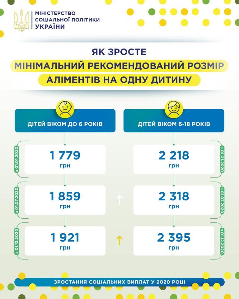 Минсоцполитики представило инфографику о размере выплат на детей / Facebook