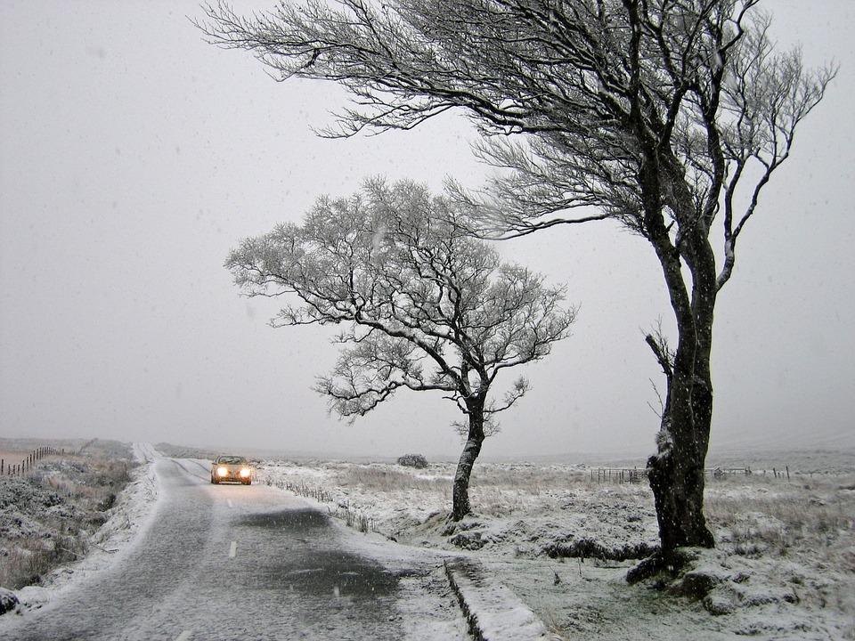 Погода в Украине 25 февраля 2020 – какие области потреплет циклон Zehra