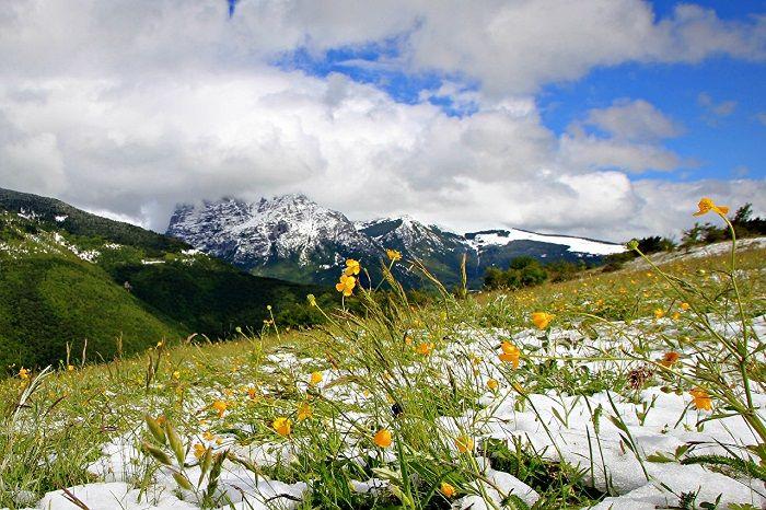 весна_снег_природа_горы