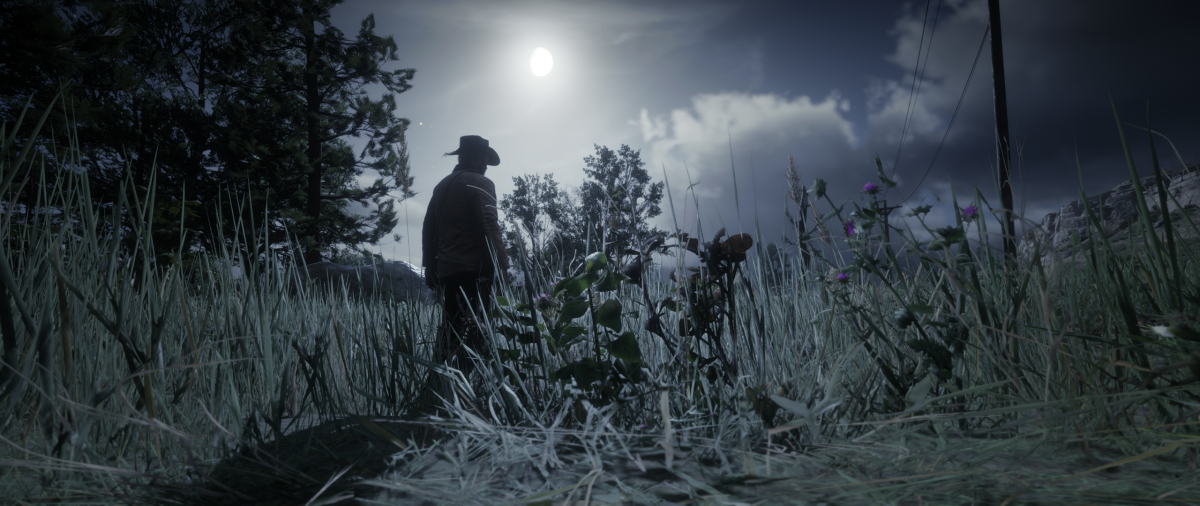 Ночь в Red Dead Redemption 2