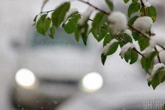 зима,снег