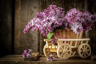 1 мая - праздник Весны и Труда - поздравления, приметы