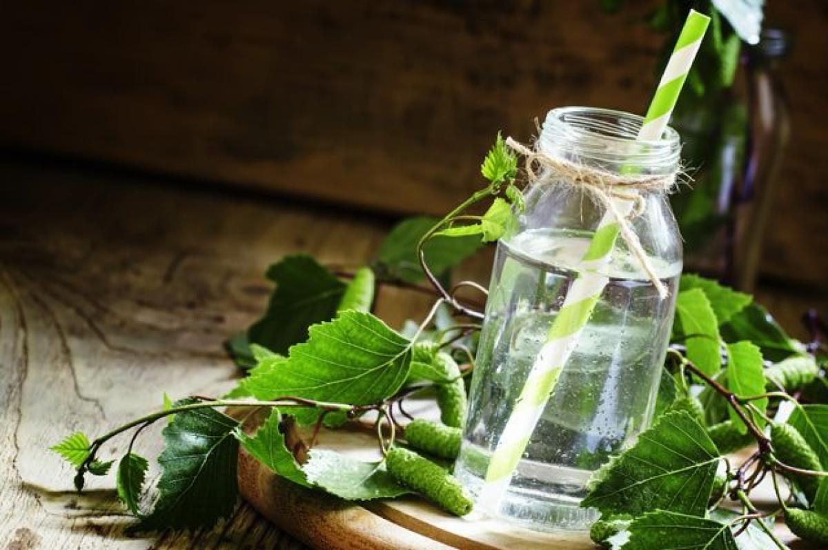 Березовый сок – польза, рецепт, как и когда собирать березовый сок в 2020 году